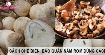 Cách chế biến nấm rơm ngon bổ dưỡng