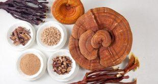6 bài thuốc đông y chữa thiếu máu hiệu quả 4