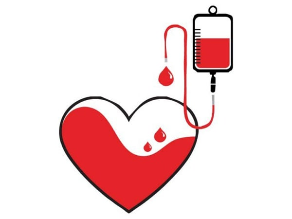 Nguyên nhân dấu hiệu và cách khắc phục tình trạng thiếu máu ở bà bầu