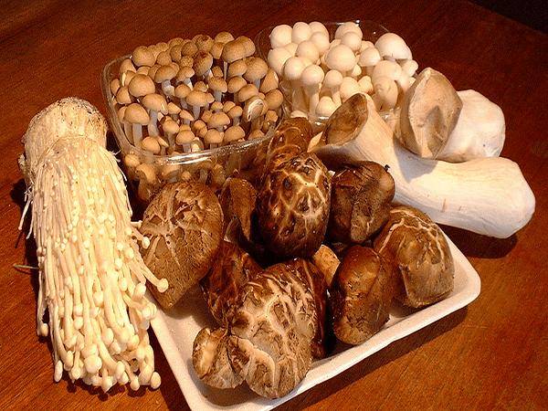 Nấm là thực phẩm tốt cho tinh trùng nam giới