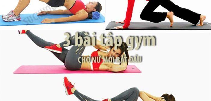 3 bài tập gym hay cho nữ mới bắt đầu - bước đầu để có cơ thể đẹp