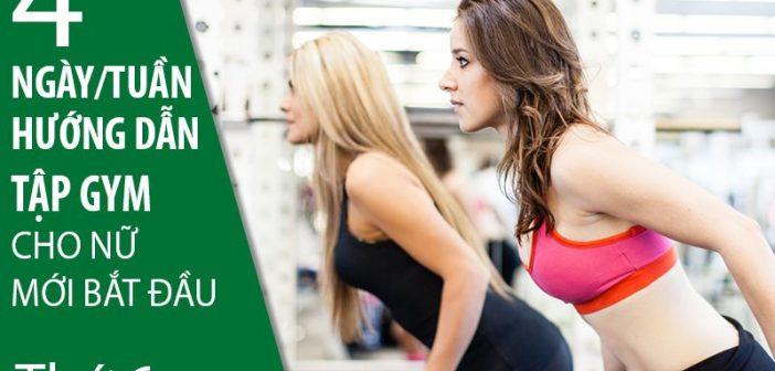 Hướng dẫn tập gym cho nữ mới bắt đầu 4 ngày/tuần (Phần cuối)
