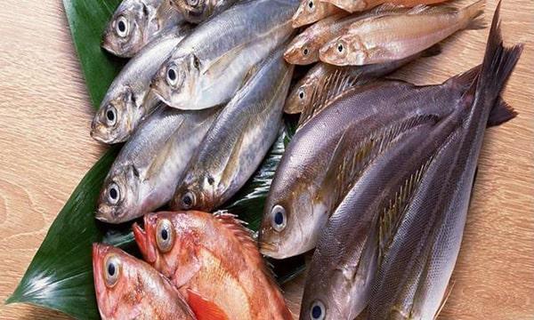 Không ăn các loại cá chứa nhiều thủy ngân