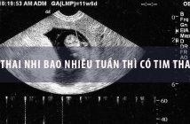 Thai nhi bao nhiêu tuần thì có tim thai?