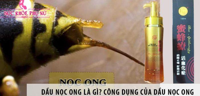 Dầu nọc ong là gì? Công dụng của dầu nọc ong