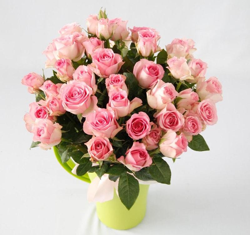 Hoa hồng hợp tuổi Bính Dần (1986, 1926) – Mệnh Hỏa